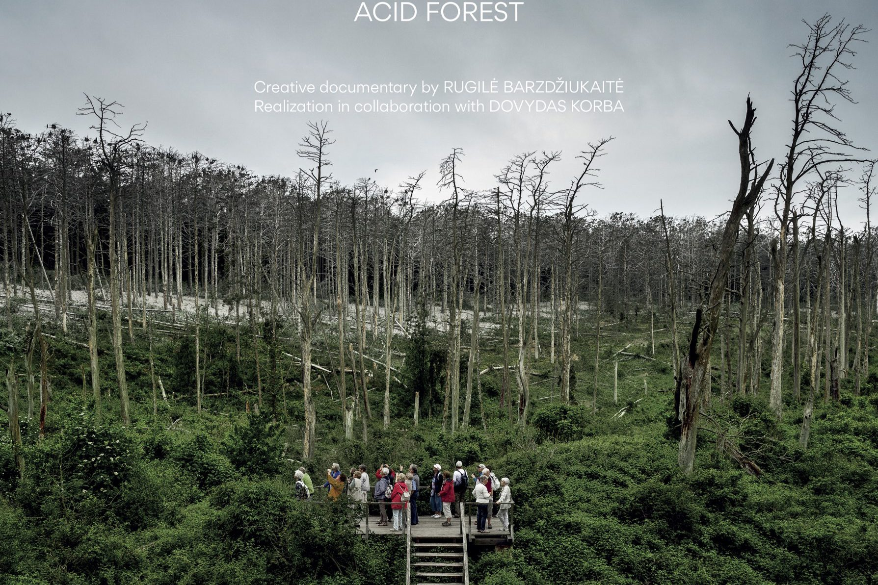 """Kino filmas ,,Rūgštus miškas"""""""