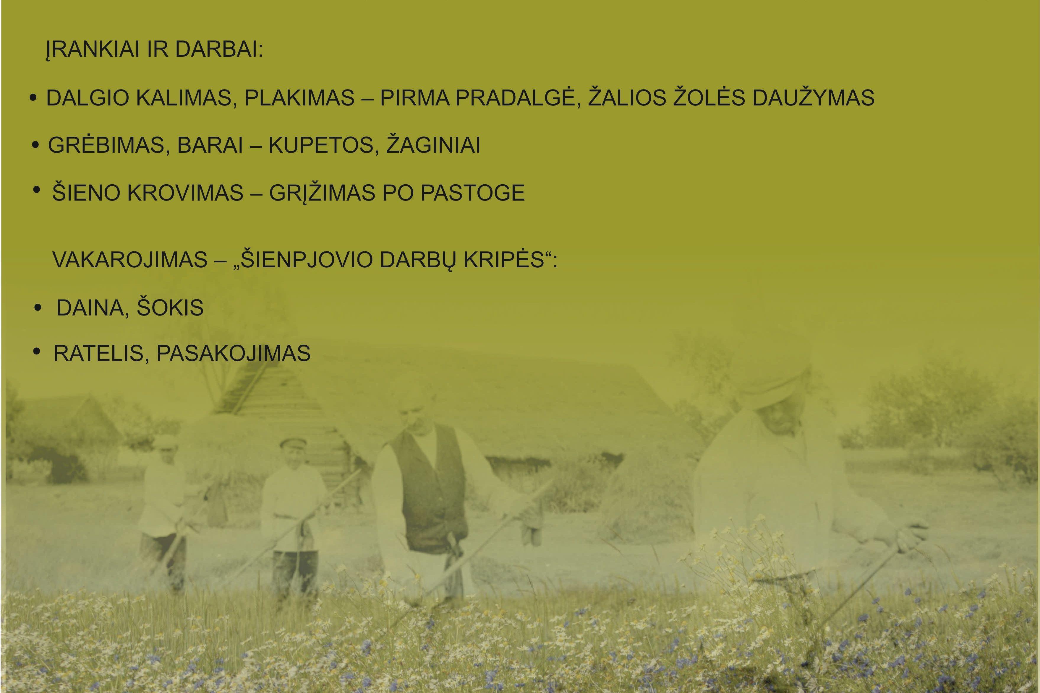 Virtualus etnografinių regionų folkloro festivalis